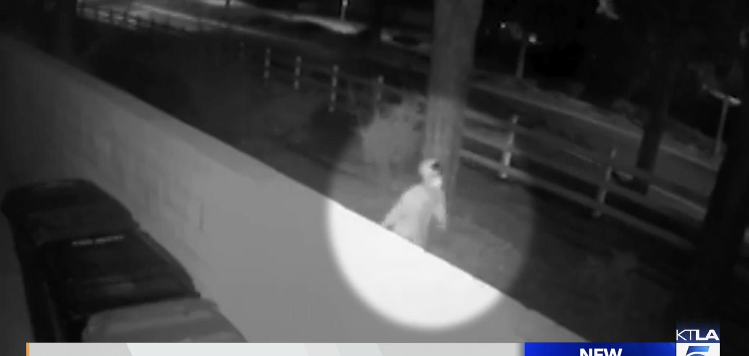 凶手於3月7日凌晨三時潛入受害人家中行兇。KTLA截圖