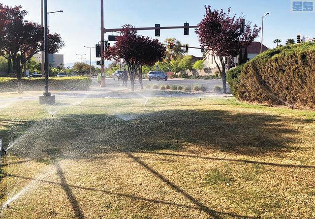 拉斯維加斯正在推動成為全球首座禁止觀賞用草坪城市。美聯社
