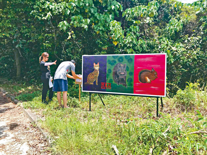 旅發局推介六條藝術文化路綫,位於元朗下白泥的藝術板畫,成為遊人勝地。