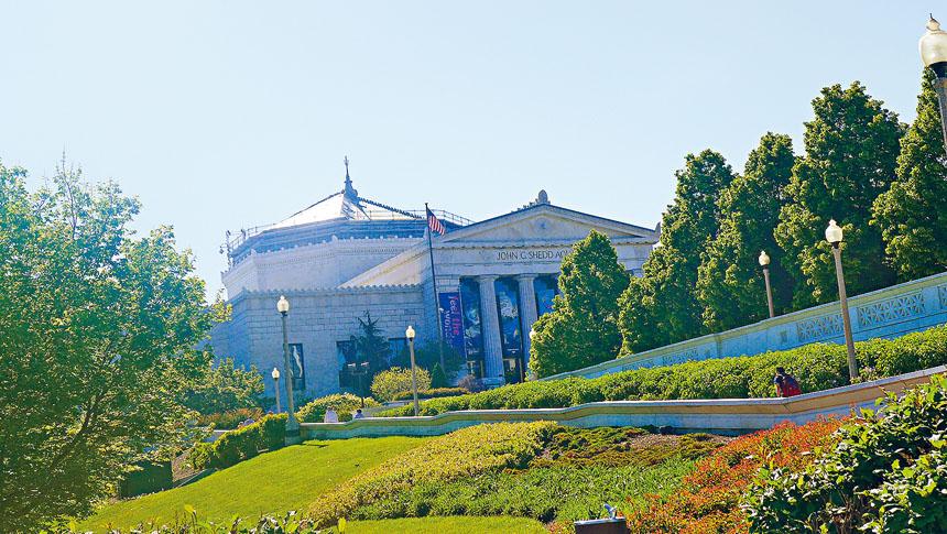 廣受到市民與遊客歡迎的雪德水族館,開放後預期將會迎來大批的遊客。梁敏育攝