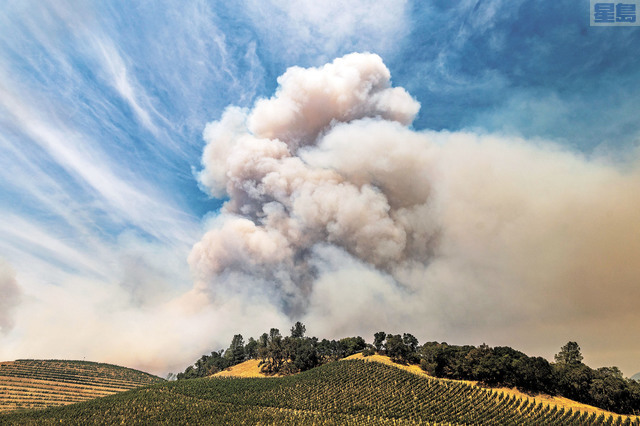 太平洋煤電警告,加州乾旱情況使得今年山火季度開始得更早。美聯社資料圖片