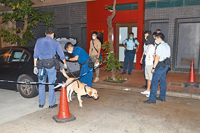 警方押同油麻地被捕司機,及帶來警犬協助搜車。