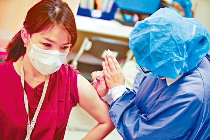 輔仁大學醫院醫護人員昨日接種疫苗。