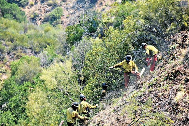 「柳木山火」周一仍未見有受控跡象,消防員在荒蕪山野開闢防火線。洛斯柏德尼斯國家森林